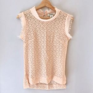 Form Fitting Light Pink Sheer Lace Top, Small